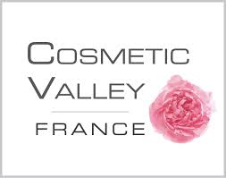 images.cosmetic valley