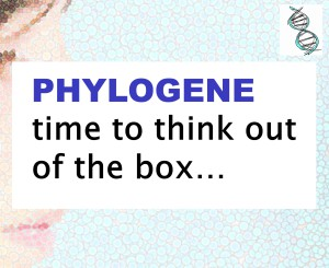Phylogene: a Comprehensive Analysis of the Effects of Cosmetics.