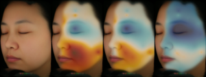 Newtone Technologies: Facial skin mapping, from single point bio-instrumental evaluation to continuous visualization of skin parameters